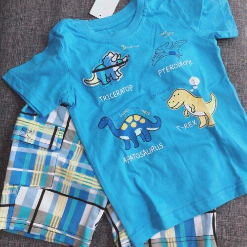 Summer Boy Clothes T-Shirt And Shorts (cartoon dinosaur) photo review