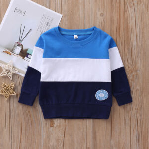 Baby / Toddler Fashion Colorblock Long-sleeve Pullover