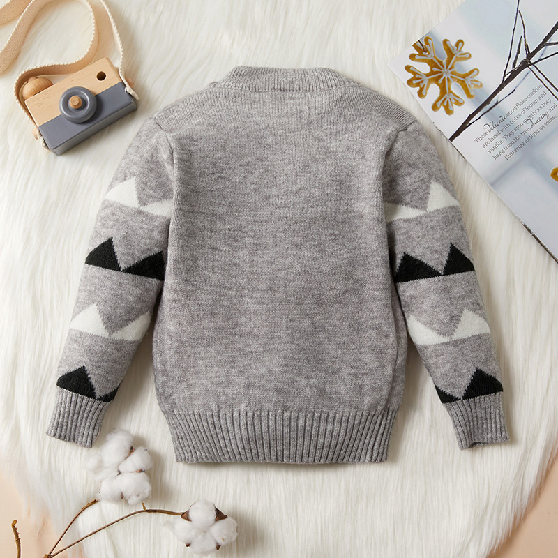 Baby / Toddler Boy Adorable Dino Decor Warm Knitwear