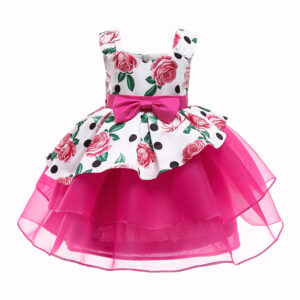 Toddler Girl Pretty Rose Print Tulle Layered Party Dress