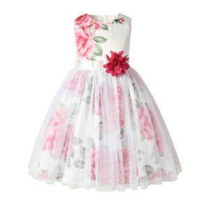 Toddler Girl Pretty Floral Decor Tulle Party Dress