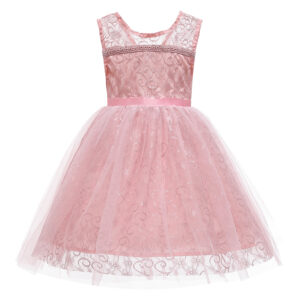 Toddler Girl Lace Mesh Sleeveless Party Dress