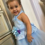 Baby / Toddler Girl Pretty Floral Decor Tulle Solid Party Dress photo review
