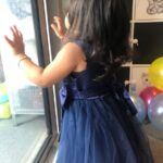 Baby / Toddler Girl Pretty Floral Embroidery Stylish Tulle Party Dress photo review