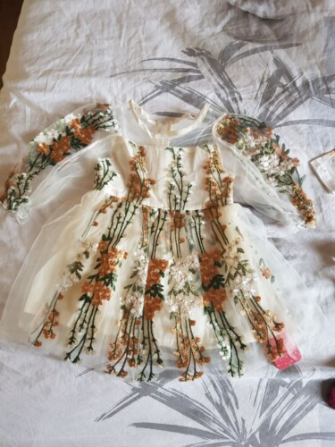 Baby / Toddler Girl Floral Embroidered Grenadine Ruffle Long-sleeve Dress photo review