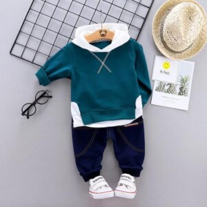 2-piece Casual Splice Hooded Sweatshirt and Pants Set