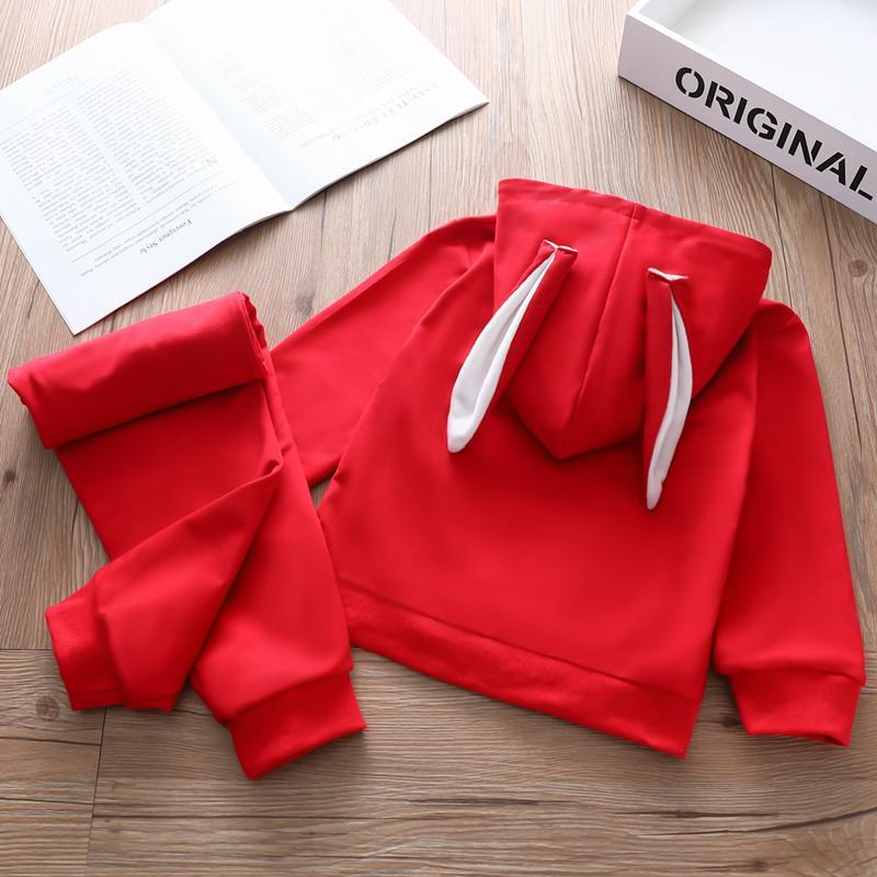 2-piece Rabbit Design Hoodie & Pants for Toddler Girl