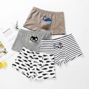 Cartoon Design Panties for Boy