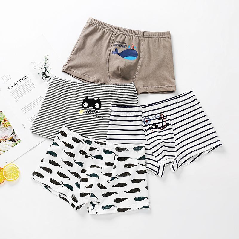Cartoon Design Panties for Boy