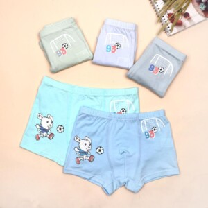 5-piece Panties for Toddler Boy