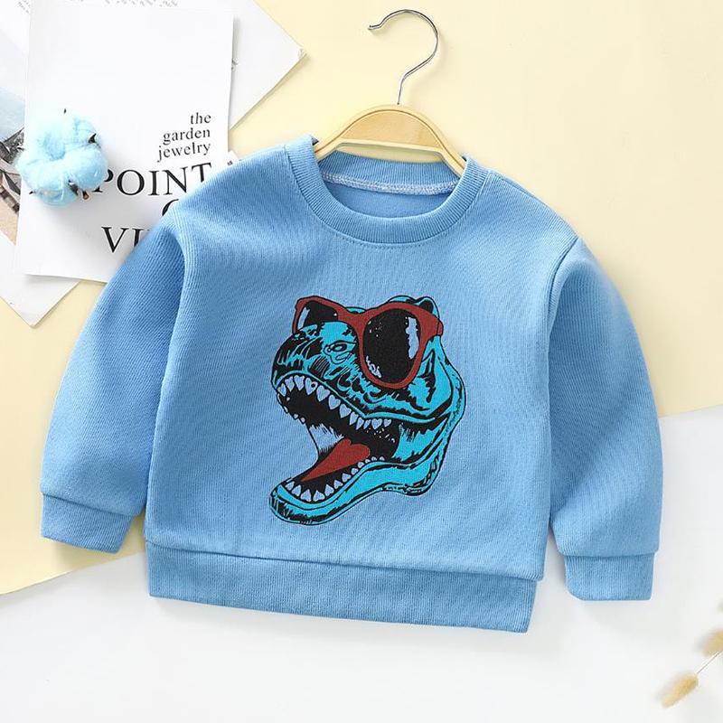 Sweatshirts for Toddler Boy