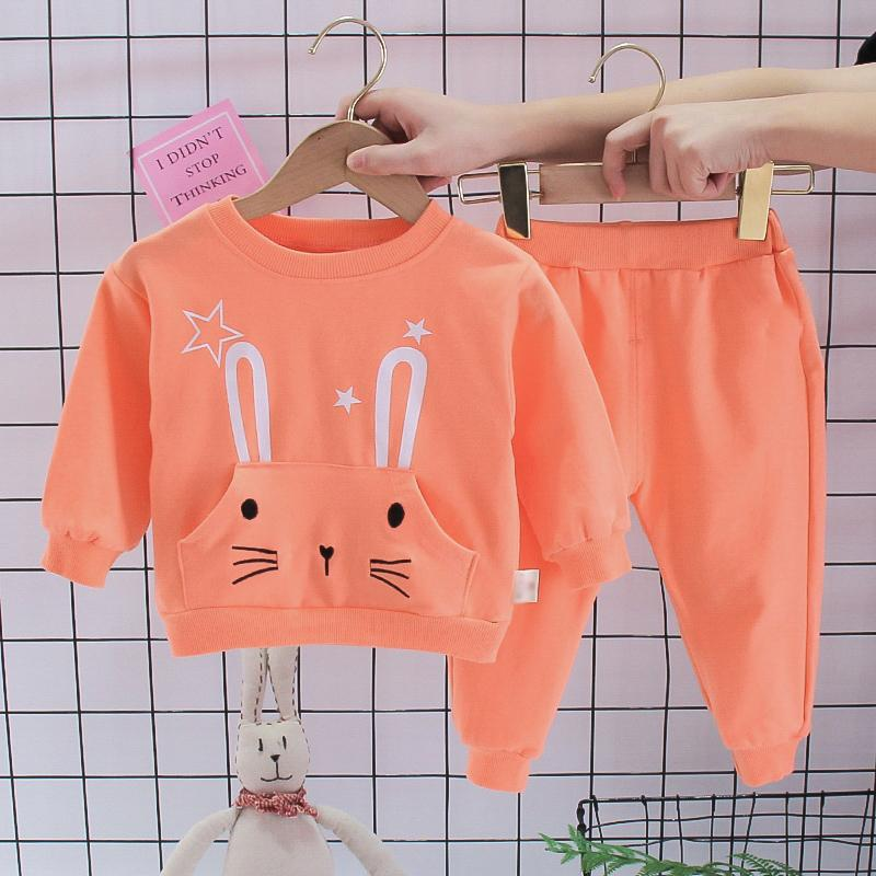 2-piece Rabbit Pattern Sweatshirt & Pants for Toddler Girl