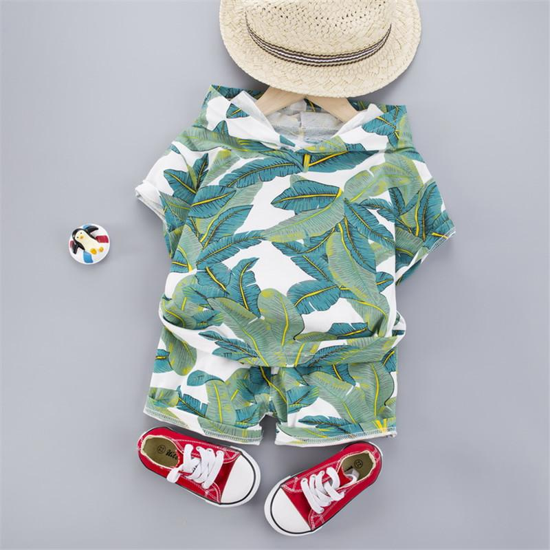 2-piece Hooded T-shirt & Shorts for Toddler Boy