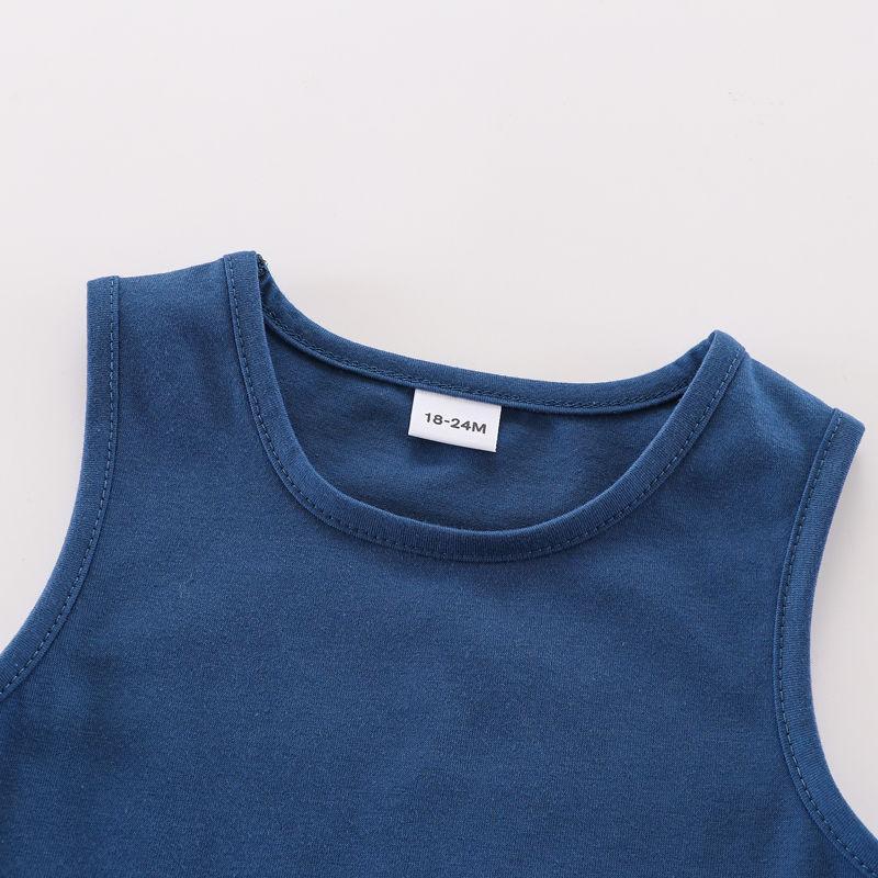 Toddler Boy Summer Knitted Vest